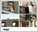 Height in TreT-Style!