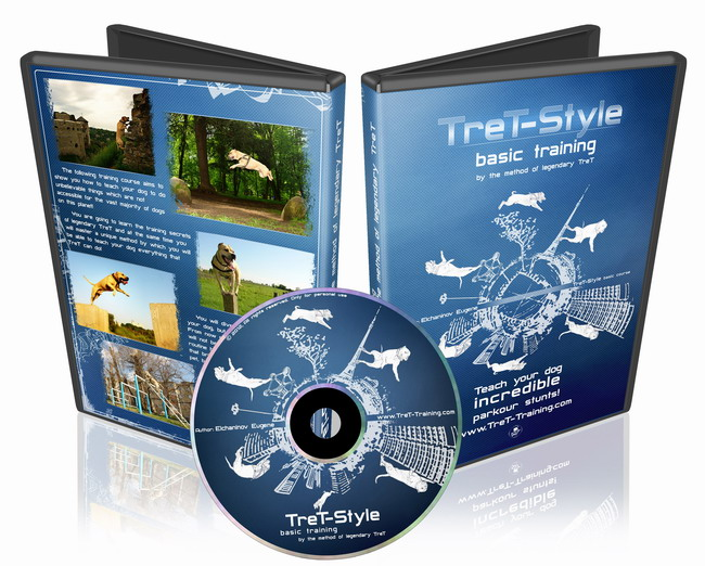"Video course ""TreT-Style: base training"""