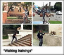 Walking trainings in TreT-Style!